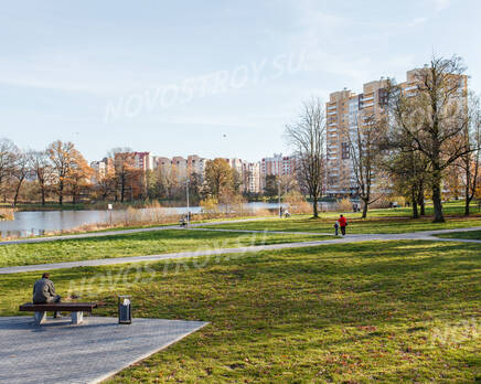 Парк недалеко от ЖК «Летний сад» (01.11.2013 г.), Ноябрь 2013