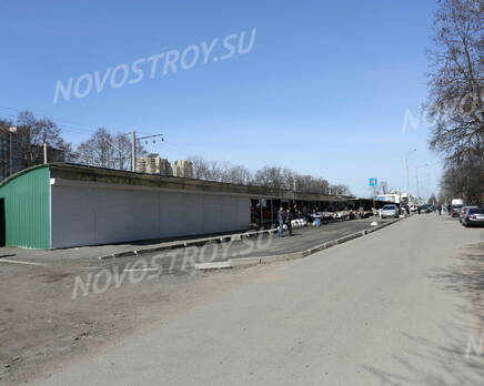 Окрестности дома на Костромской, 14 (15.04.2014), Апрель 2014
