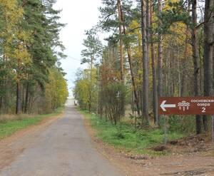 Дорога в КП «Сосновские озера-2»