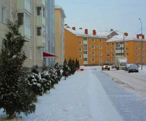 ЖК «Славянка» (14.01.2016)