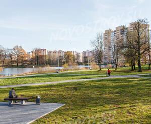 Парк недалеко от ЖК «Летний сад» (01.11.2013 г.)