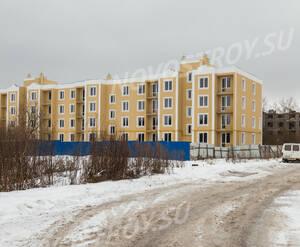 ЖК «Дом в поселке Горбунки»: фасад здания (01.02.15)