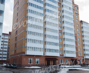 ЖК «Речной» (Малые Колпаны): фасад 3 корпуса (30.01.2016)