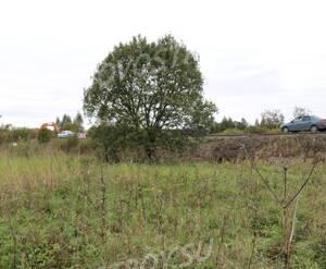 Территория строительства ЖК «Green Park»