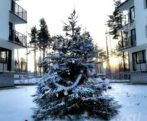 Малоэтажный ЖК «Заповедный»: из группы Вконтакте