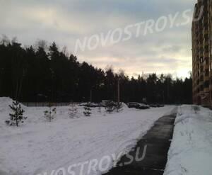 ЖК «Новое Бисерово»: лесной массив рядом с комплексом