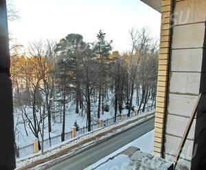 ЖК «Радужный» (Звенигород): вид из окна на лесной массив