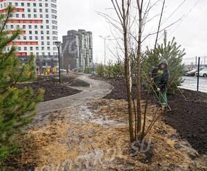 ЖК «Wellton Park Новая Сходня»: благоустройство придомовой территории
