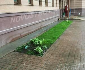 ЖК «Раменский»: благоустройство придомовой территории (фото из группы «Вконтакте»)