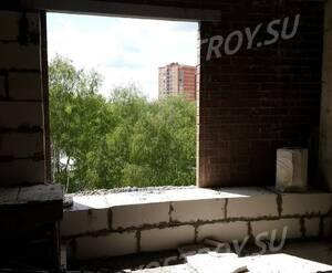 ЖК «Горизонт» (Щелково): вид из окна (фото из группы «Вконтакте»)
