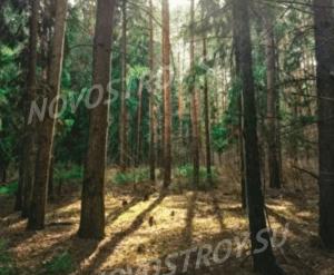 КП «Озеро Равнинское»: виды окрестностей