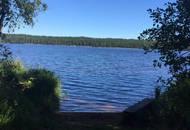 Была подтверждена экологическая безопасность посёлка «Волны и Сосны»