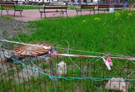 В борьбе с «козьими тропками» жители ЖК «Десяткино» начали использовать колючую проволоку